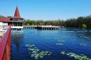 Курортная столица Шиофок. Графское поместье в Кестхее. Термальное озеро Хевиз