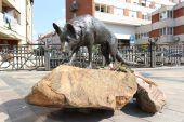 Памятник собаке Манч, Мишкольц